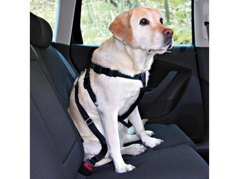 Postroj pro psy TRIXIE do auta M (50-70 cm)